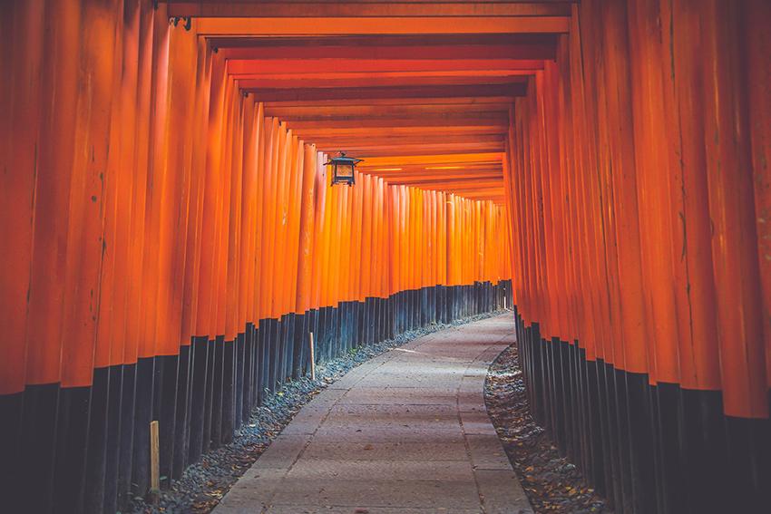 Un tunnel di torii rossi al santuario di Fushimi Inari