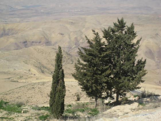 Giordania Monte Nebo